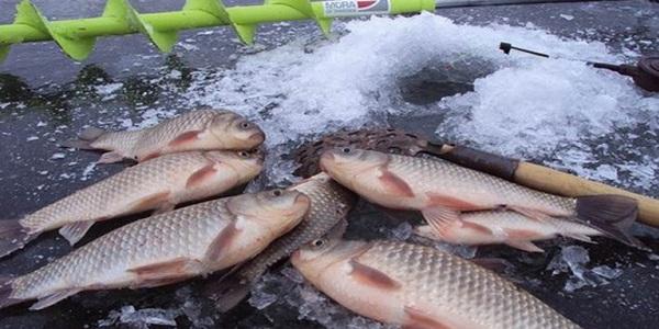 Поиск и подготовка рыбного места зимой